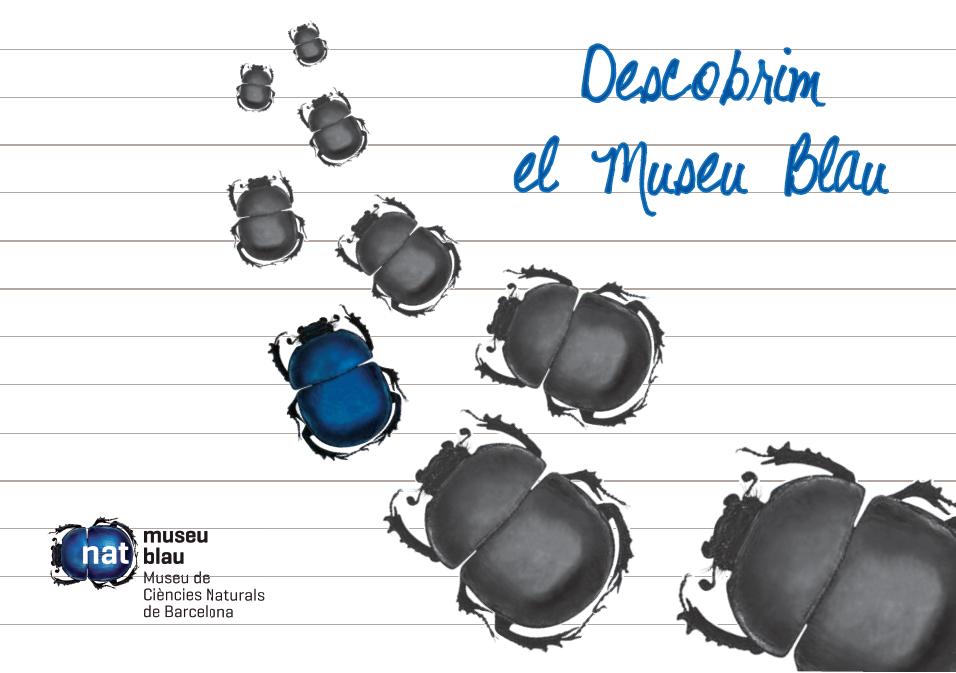 descobrim_el_museu_blau