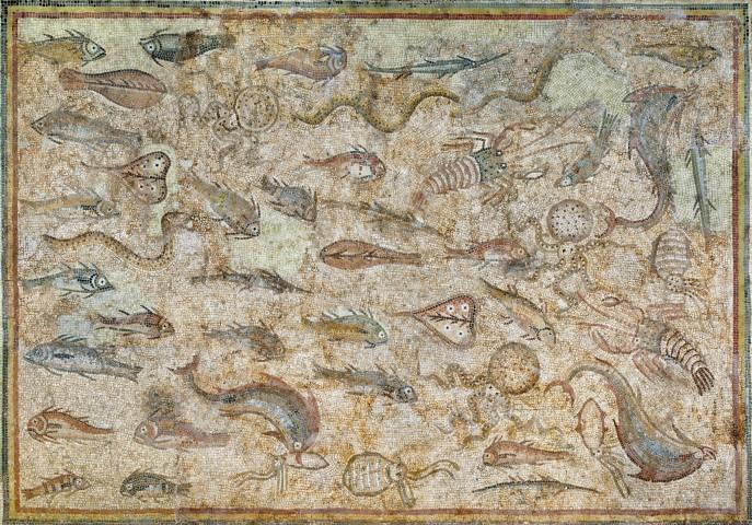 mosaic_peixos_12845 (Small)
